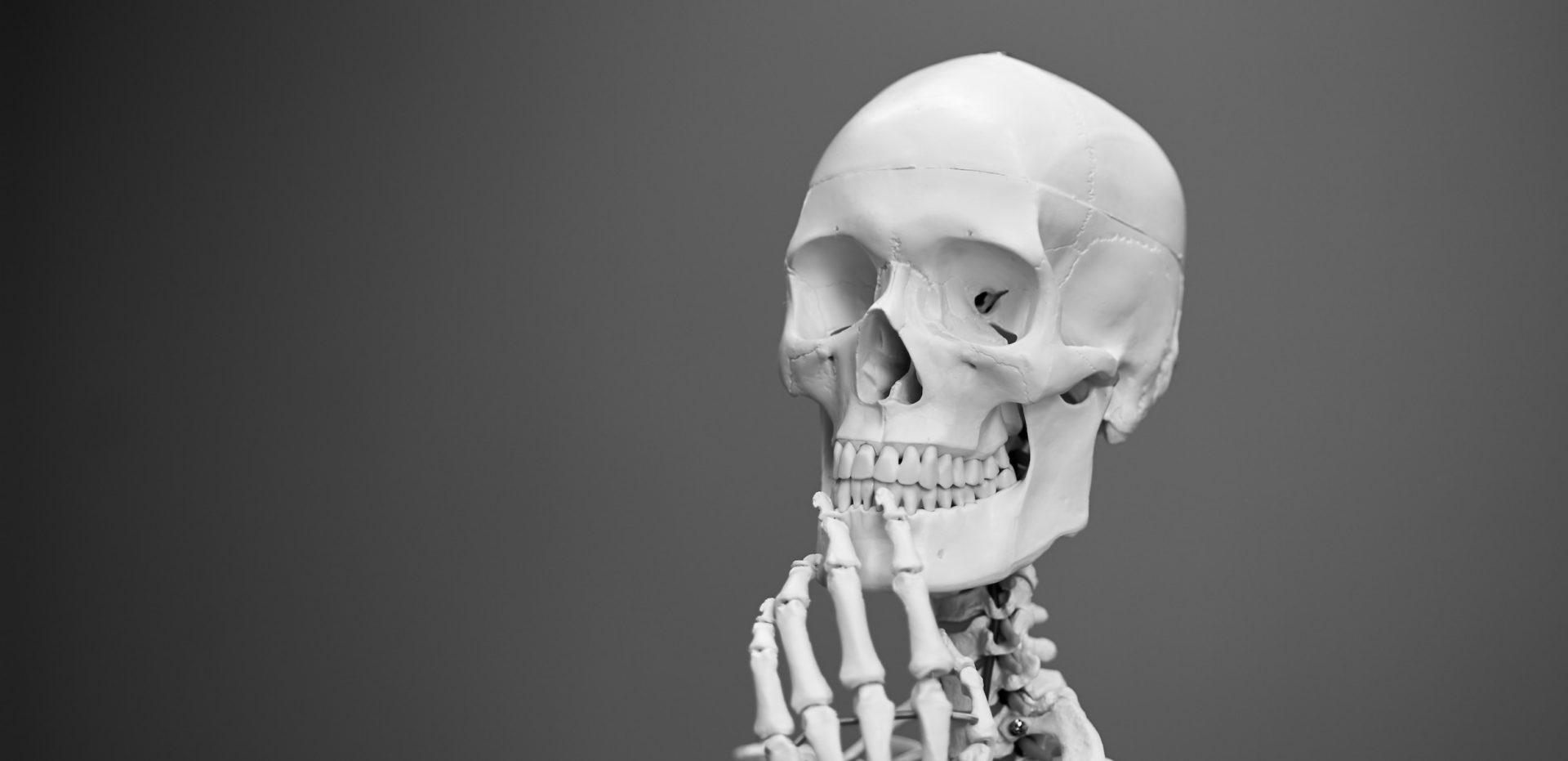 Skanujemy ciało. Część VI: Głowa. Podsumowanie cyklu